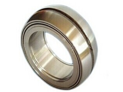 Spherical Double Row Full Complement Rolle Bearings(positioning type)
