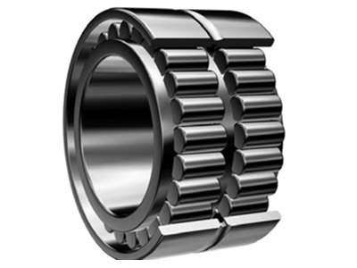 Double Row Full Complement Cylindrical Roller Bearings (Floating Type)